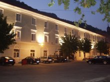 Accommodation Ticvaniu Mare, Hotel Ferdinand