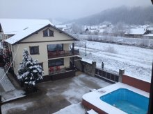 Accommodation Vorniceni, Simeria Guesthouse