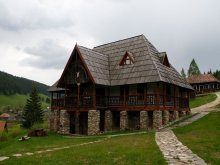 Bed and breakfast Răchitișu, Traditional skanzen pension