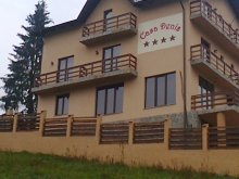 Bed and breakfast Ocnița, Casa Denis Guesthouse