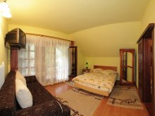 Accommodation Reteag, Ana Guesthouse