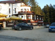 Bed & breakfast Bărbuceanu, Ancora Guesthouse