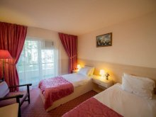 Accommodation Saligny, Hotel Voila