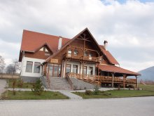 Accommodation Plopu (Dărmănești), Várdomb B&B