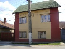 Guesthouse Peste Valea Bistrii, Shalom Guesthouse