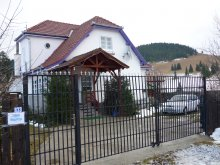 Bed & breakfast Borzont, Viorica B&B