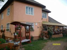 Bed & breakfast Borleasa, Jutka Guesthouse