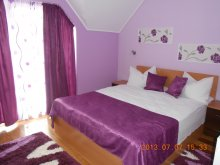 Accommodation Valea Mare de Codru, Vura Guesthouse