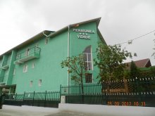 Accommodation Beclean (Băile Figa) (Beclean), Verde B&B