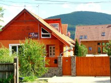 Bed & breakfast Cuchiniș, Rose Guesthouse