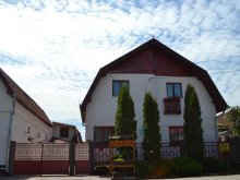 Accommodation Ostrov, Nisztor Guesthouse