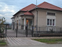 Accommodation Valea Bistrei, Bolinger Guesthouse