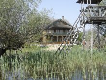 Accommodation Tulcea county, Guesthouse Morena