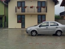 Apartment Cicârd, Charter Apartments - Vila Costea