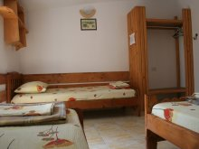 Accommodation Gherghina, Pinciuc Guesthouse