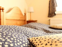 Bed & breakfast Erdőtarcsa, Boulevard City Guesthouse