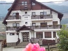 Bed and breakfast Prislopu Mare, Lais Guesthouse