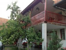 Accommodation Valea Uzei, Piroska Guesthouse