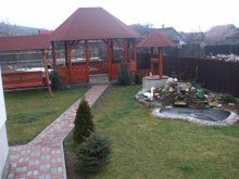 Bed and breakfast Valea Lupului, Gabi Guesthouse