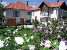 Guesthouse Chijic, Leda Guesthouse