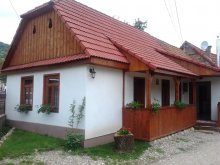 Accommodation Valea Uzei, Rita Guesthouse