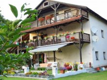 Bed & breakfast Balatonfenyves, Villa Negra Guesthouse