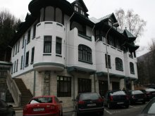 Accommodation Cândești-Deal, Hotel Tantzi