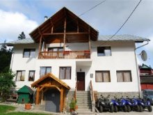 Bed and breakfast Predeal, Vila Vitalis
