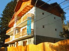 Bed & breakfast Lunca (Amaru), Casa Soarelui B&B