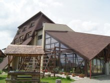 Bed and breakfast Peste Valea Bistrii, Andreea Guesthouse