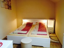 Accommodation Dealu Negru, Adina Guesthouse