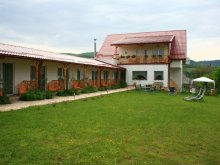 Bed & breakfast Munteni, Poezii Alese Guesthouse