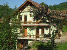 Guesthouse Monor, Ambrus Árpád Guesthouse
