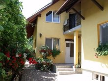 Accommodation Rădaia, Balint Gazda Guesthouse