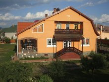 Guesthouse Rodna, Timi Guesthouse