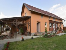 Accommodation Borzont, Elekes Guesthouse