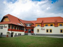 Bed and breakfast Răchitișu, Amadé Guesthouse