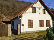Vacation home Lescovița, Nagy Sándor Vacation home