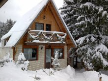 Villa Dealu, Traveland Vila