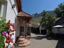 Accommodation Ponor, Piroska House