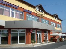Accommodation Valea Bistrei, Maestro Motel