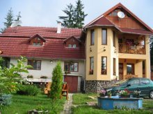 Vacation home După Deal, Aura Vila