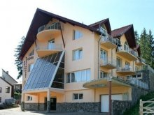 Accommodation Braşov county, Cool Guesthouse
