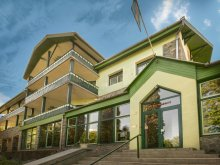 Accommodation Chibed, Teleki Hotel