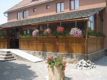 Bed and breakfast Valea Nacului, Botimi Guesthouse