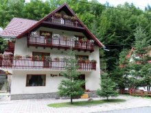 Bed & breakfast Frasin-Deal, Raza Soarelui Guesthouse
