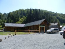 Accommodation Giulești, Mama Uța Guesthouse