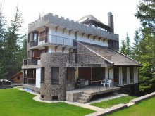 Vacation home Valea Cerbului, Stone Castle