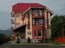 Accommodation Pădureni (Dămienești), Octogon Guesthouse