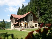 Accommodation Unirea, Denisa Guesthouse
